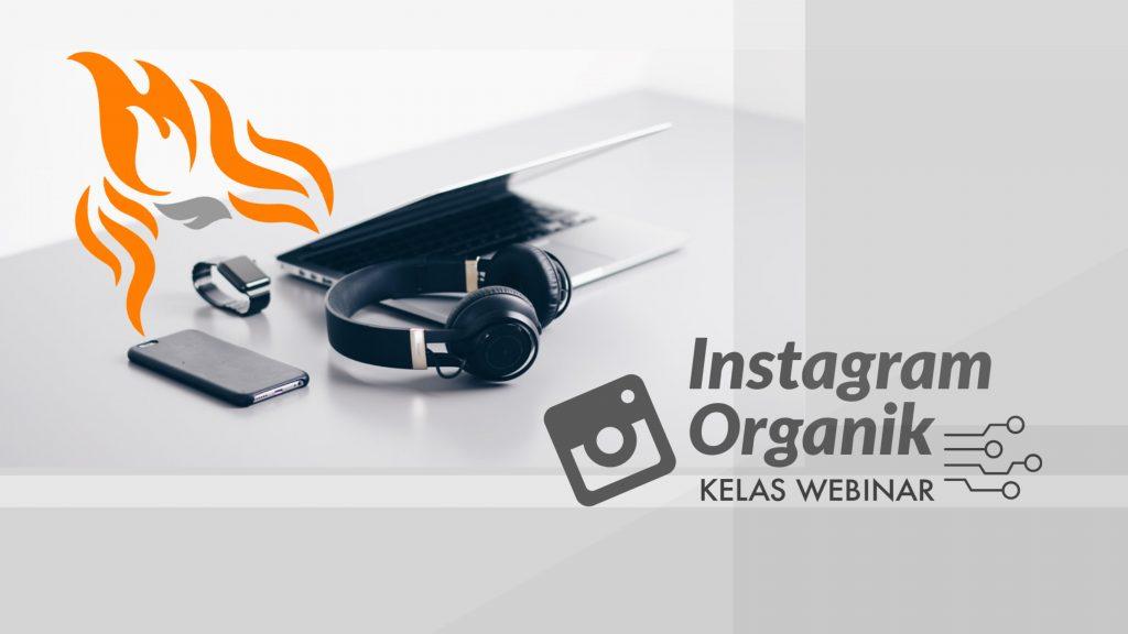 Kelas Webinar Instagram Organik
